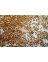 Perline Delica Miyuki Duracoat Galvanized Gold 11/0 - 8gr