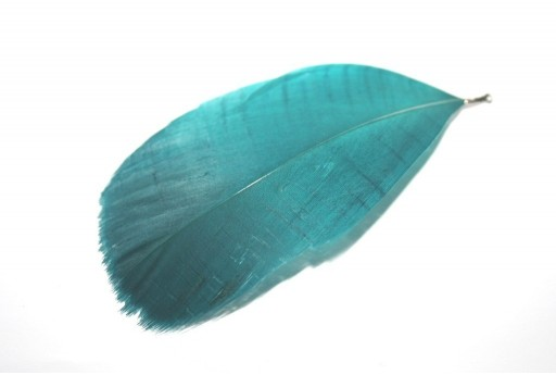 Peacock Feather with End Green 75mm - 4pcs