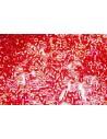 Perline Delica Miyuki Transparent Light Siam AB 11/0 - 8gr
