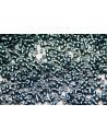 Miyuki Delica Beads Galvanized Dyed Dark Teal 11/0 - 8gr