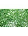 Delica Miyuki Opaque Green AB 11/0 - 50gr
