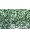 Miyuki Seed Beads Galvanized Green 11/0 - Pack 50gr