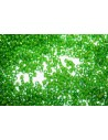 Delica Miyuki Lined Green Lime 11/0 - 50gr