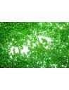 Miyuki Delica Lined Green Lime 11/0 - Pack 50gr