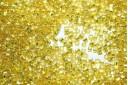 Delica Miyuki Silver Lined Yellow 11/0 - 8gr