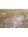 Miyuki Seed Beads Galvanized Gold 15/0 - Pack 50gr