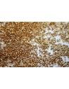 Delica Miyuki Duracoat Galvanized Gold 11/0 - 50gr