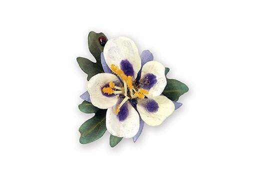 Fustelle Thinlits Fiore Columbine Viola Susan's Garden Sizzix