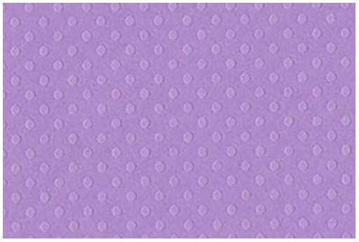 Cartoncino Bazzill Dotted Swiss Berry Pretty 30x30cm 1 foglio