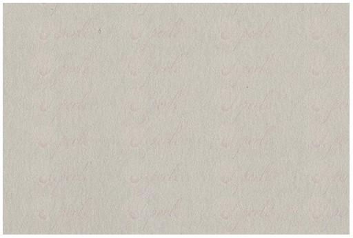 Cardstock Bazzill Card Shoppe Alpaca 30x30cm 1 sheet
