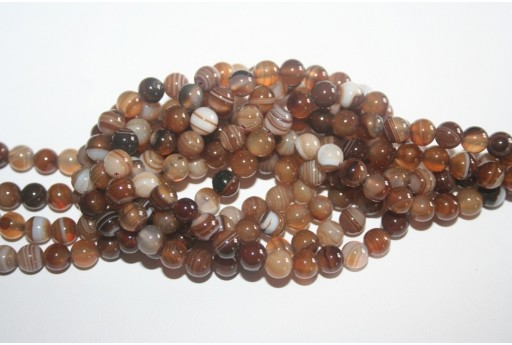 Agate Beads Brown Veined Sphere 6mm - 62pz