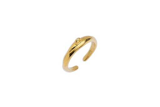 Bold Ring 17mm With Ring - Gold