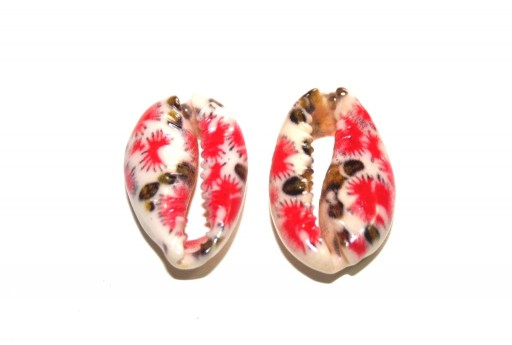 Cowrie Shell - Red Brown 20x13mm aprox. - 4pcs