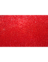 Perline Toho Round Rocailles 11/0, 10gr. Trans Siam Ruby Col.5B