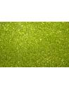 Perline Toho Round Rocailles 11/0, 10gr. Transparent Lime Col.4