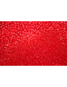 Toho Seed Beads 8/0, 10gr., Transparent Siam Ruby Col.5B