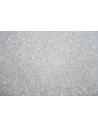 Perline Delica Miyuki Opaque White AB 11/0 - 8gr