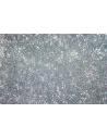 Perline Delica Miyuki Trans. AB Light Aquamarine 11/0 - 8gr