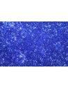 Perline Delica Miyuki Transparent Cobalt AB 11/0 - 8gr