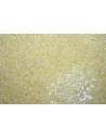 Toho Seed Beads 8/0, 10gr., Ceylon Banana Cream CR8142