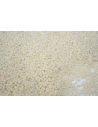 Perline Toho Round Rocailles 15/0, 10gr. Opaque Beige