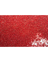 Perline Toho Round Rocailles 15/0, 10gr. Silver-Lined Ruby