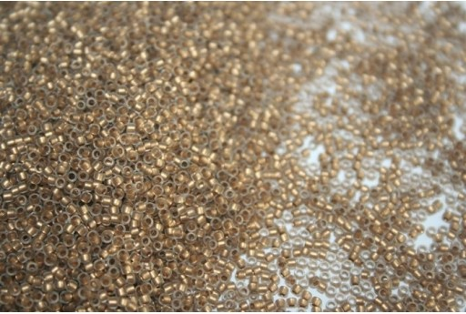 Perline Toho Round Rocailles 15/0, 10gr. Frosted Gold-Lined Crystal