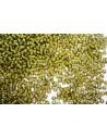 Toho Seed Beads 8/0, 10gr., Inside-Color Luster Black Diamond/Opaque Yellow Col.246