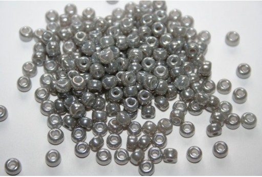 Miyuki Seed Beads Silver Gray Ceylon 6/0 - 10gr