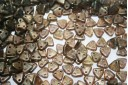 Triangle Beads Aquamarine-Copper Picasso 6mm - 8gr