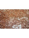 Toho Seed Beads 8/0, 10gr., Permanent Finish-Galvanized Rose Gold Col.PF551